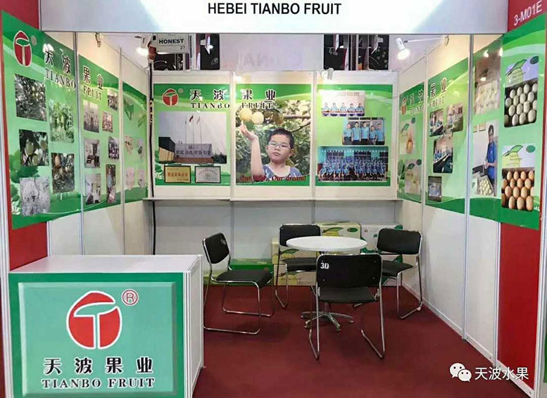Tianbo fruit debut  in Asia fruit logistica