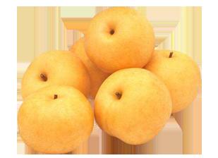 Singao Pear